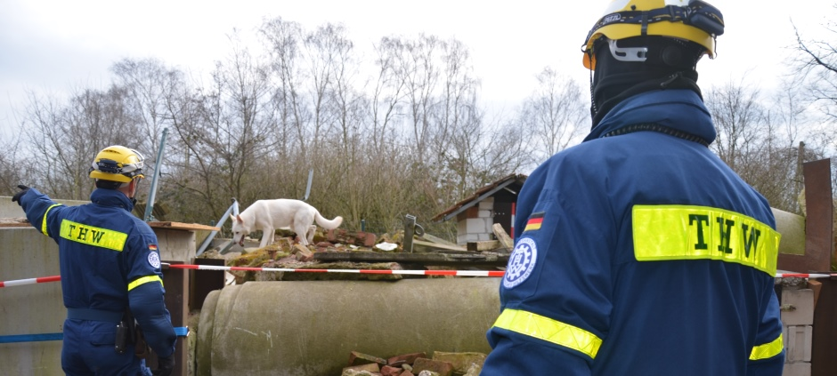 THW volunteers are giving the rescue dog the command to search for trapped people.