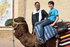 Ride on a dromedary.  (show image)