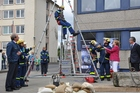 During the presentation of height rescue, the Federal Chancellor Angela Merkel, got involved in the process. (show image)